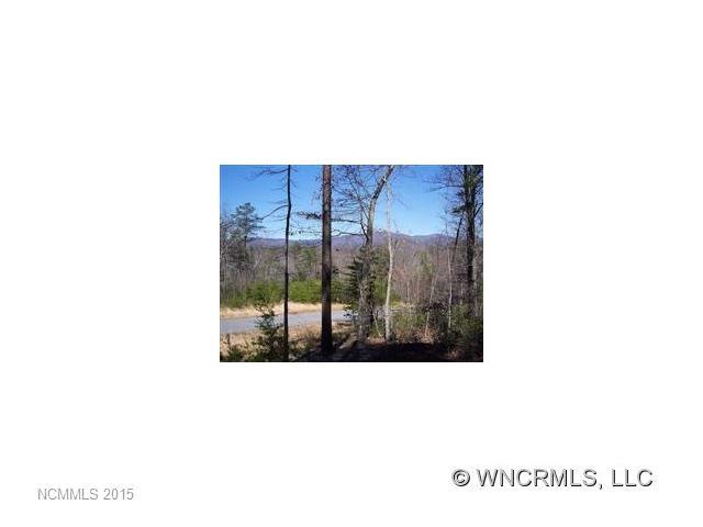 25 Lake Adger Pkwy, Mill Spring, NC 28756