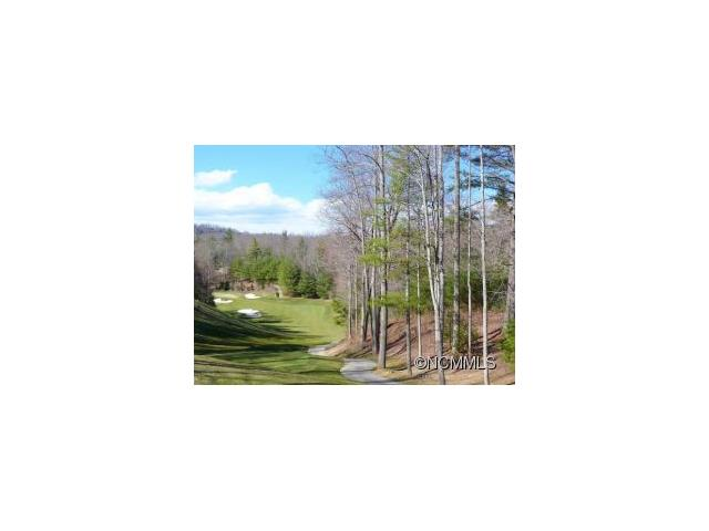 3 COOPER COVE 53B, Hendersonville in Henderson County, NC 28739 Home for Sale
