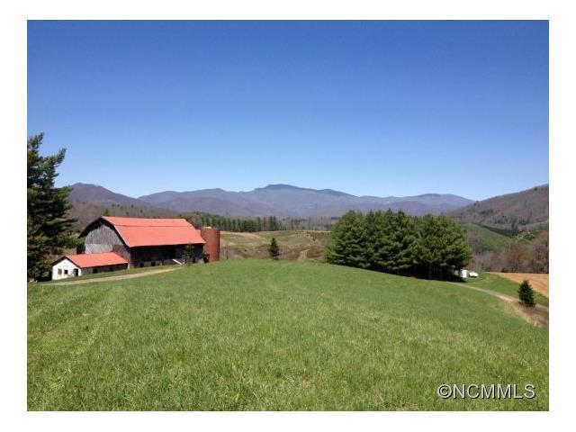 110 acres Green Mountain, NC