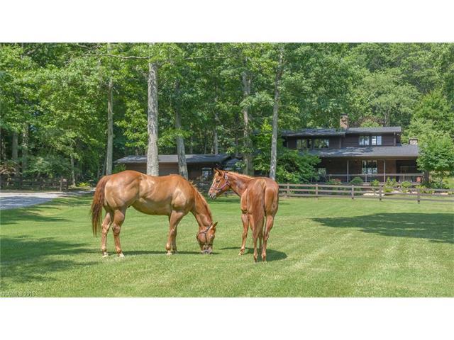 18.43 acres Asheville, NC