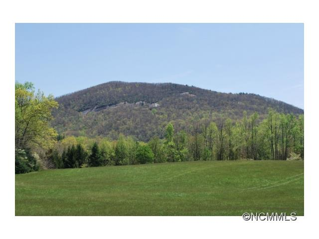 Image of Acreage for Sale near Hendersonville, North Carolina, in Henderson County: 38.3 acres