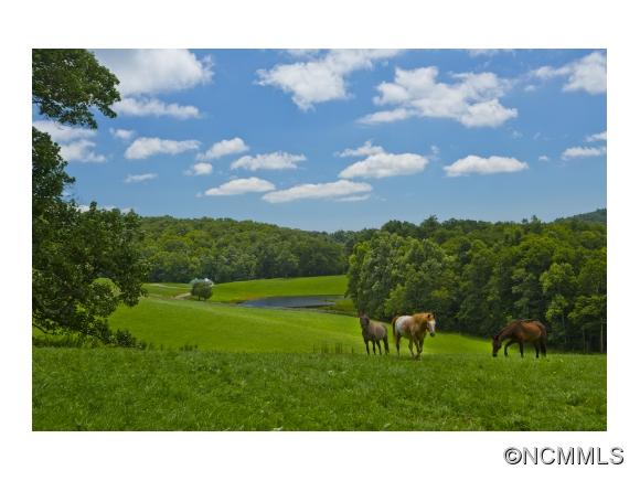 140.2 acres Spruce Pine, NC