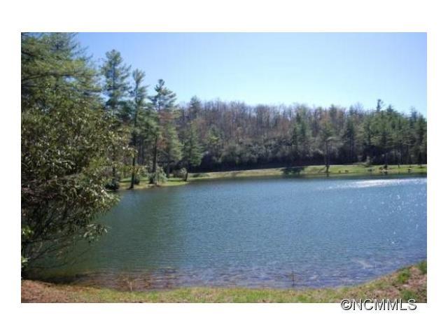Image of Acreage for Sale near Cedar Mountain, North Carolina, in Transylvania County: 12.42 acres