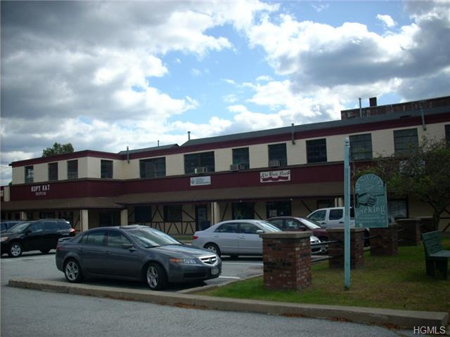 Real Estate for Sale, ListingId: 35289428, Pt Jervis,NY12771
