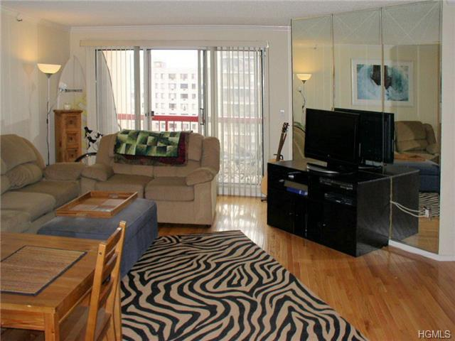 Rental Homes for Rent, ListingId:29314186, location: 10 Stewart Place White Plains 10603
