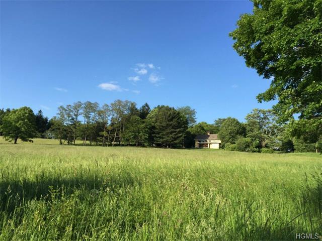 Real Estate for Sale, ListingId: 31387305, Pawling,NY12564