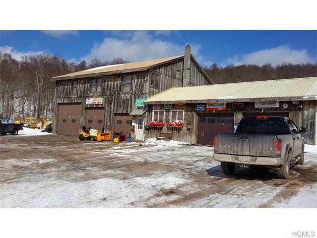 Real Estate for Sale, ListingId: 35353936, Livingston Manor,NY12758