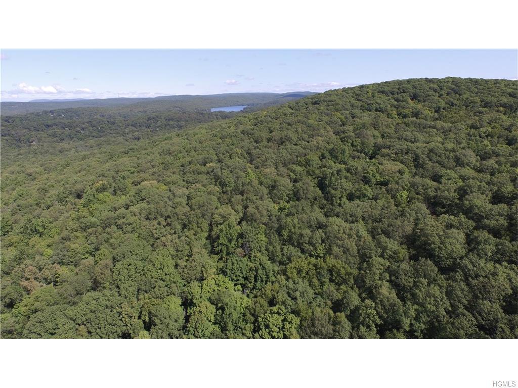 Real Estate for Sale, ListingId: 34904682, Putnam Valley,NY10579