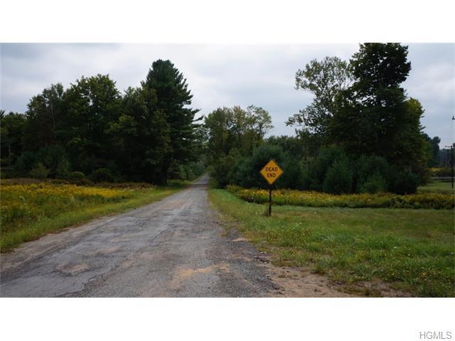 Real Estate for Sale, ListingId: 36090863, White Lake,NY12786