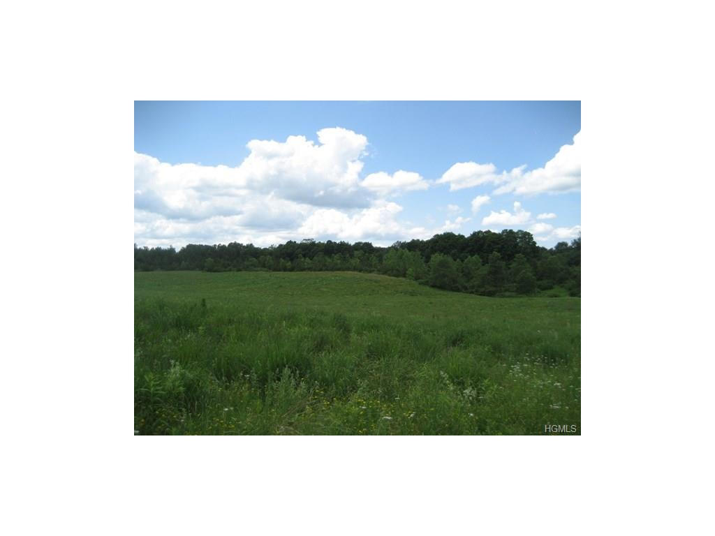 133 Woodstock Rd, Millbrook, NY 12545