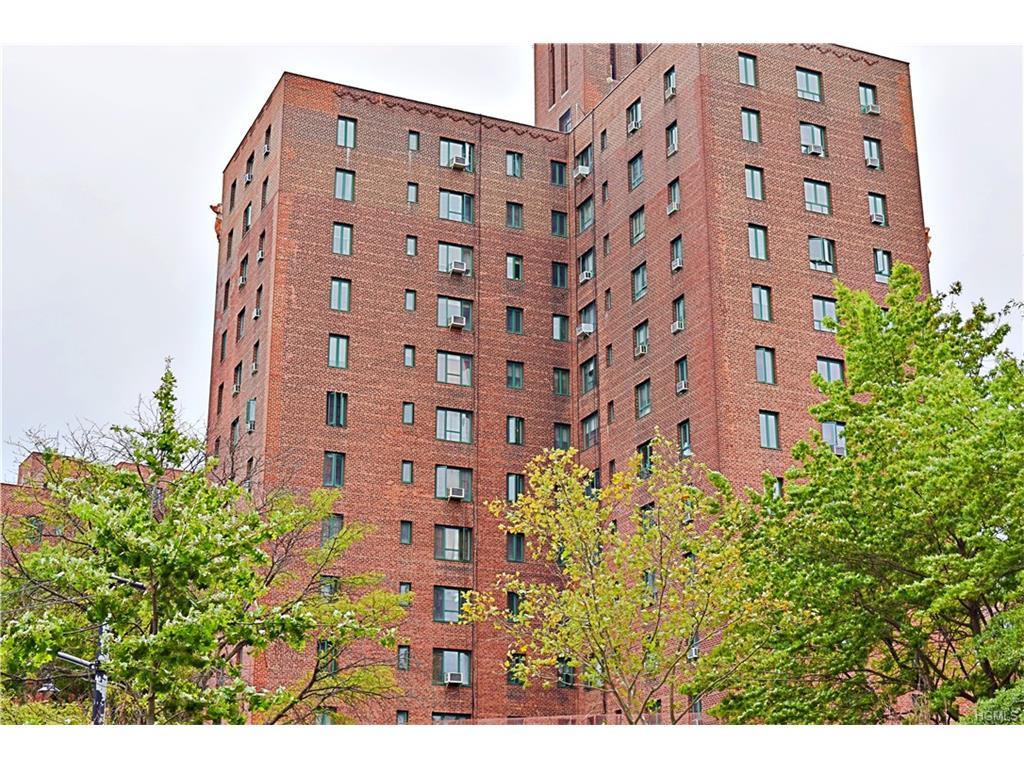 Photo of 2240  East Tremont Avenue  Bronx  NY