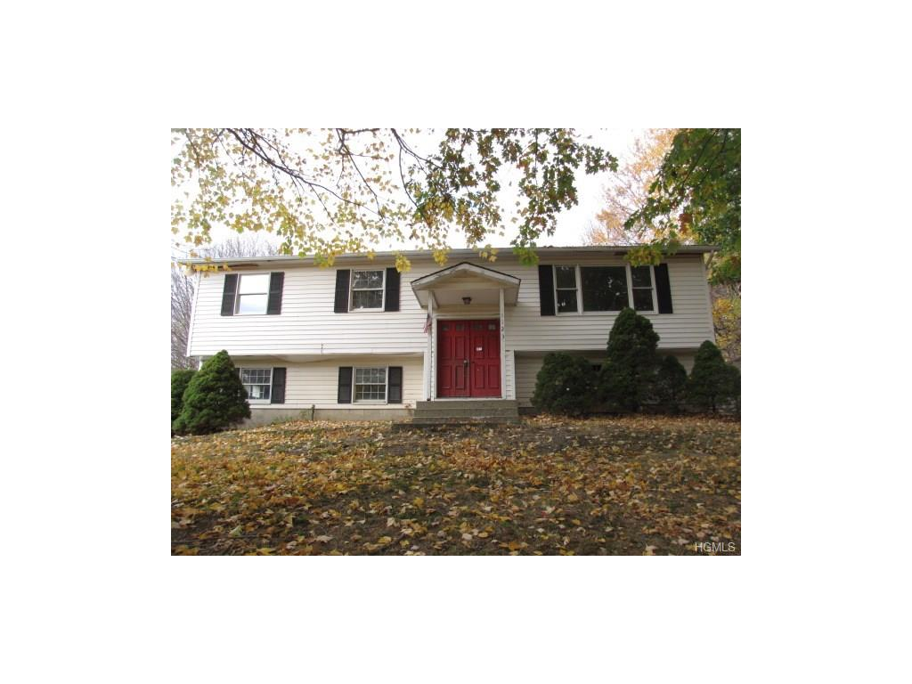 Bilevel, Single Family - Port Jervis, NY (photo 1)