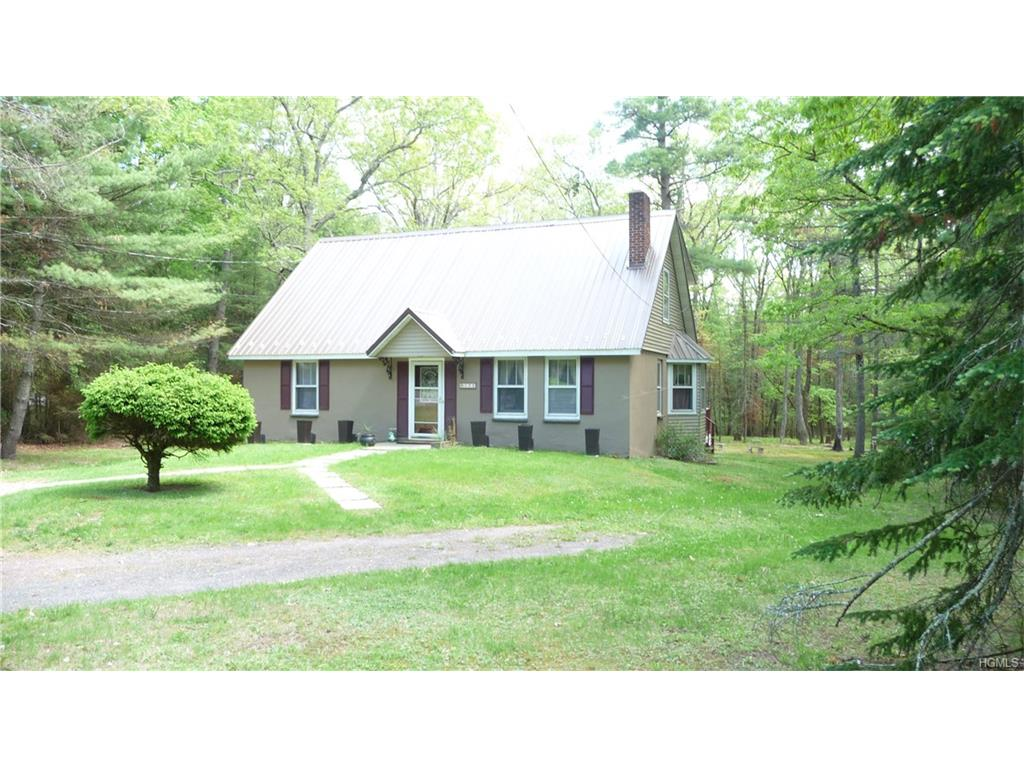Colonial,Contemporary,Raised Ranch,Two Story, Single Family - Eldred, NY (photo 2)