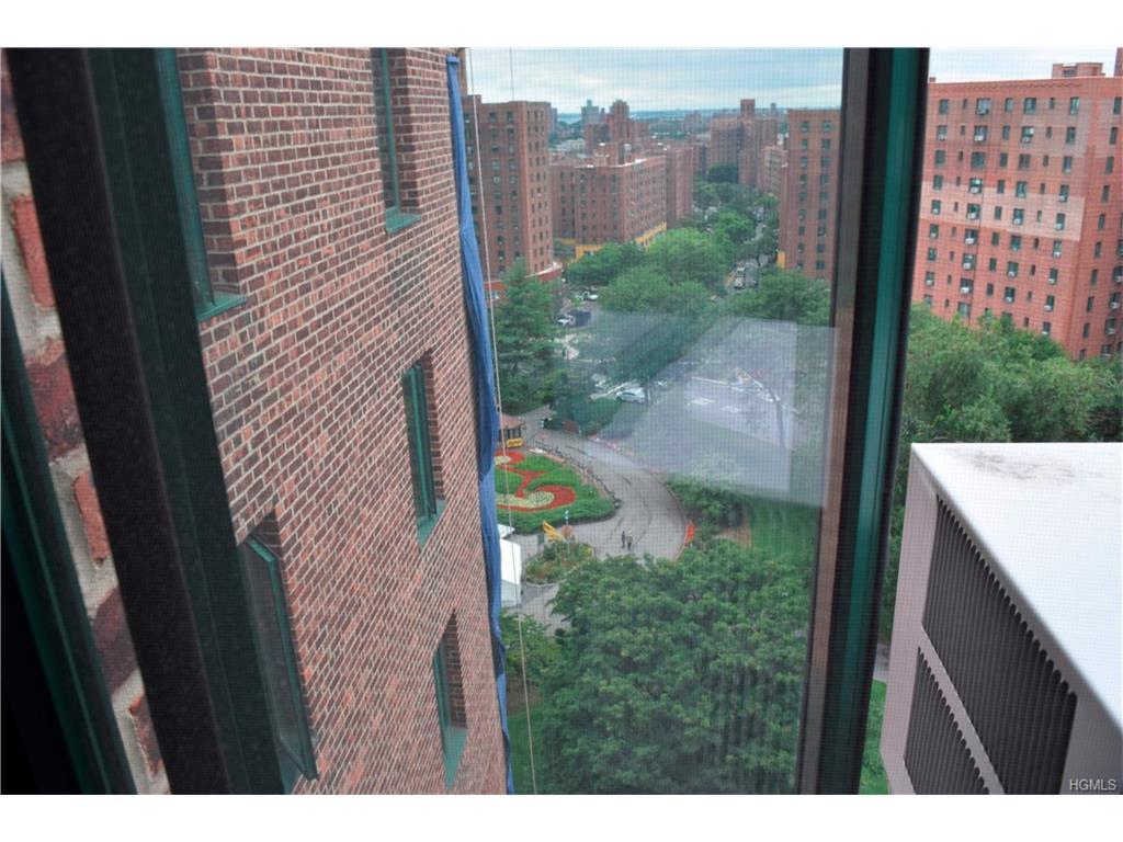 Photo of 5   Metropolitan Oval  Bronx  NY