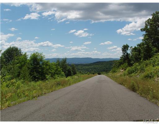 Land - Marlboro, NY (photo 1)