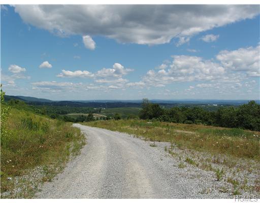Land - Marlboro, NY (photo 5)