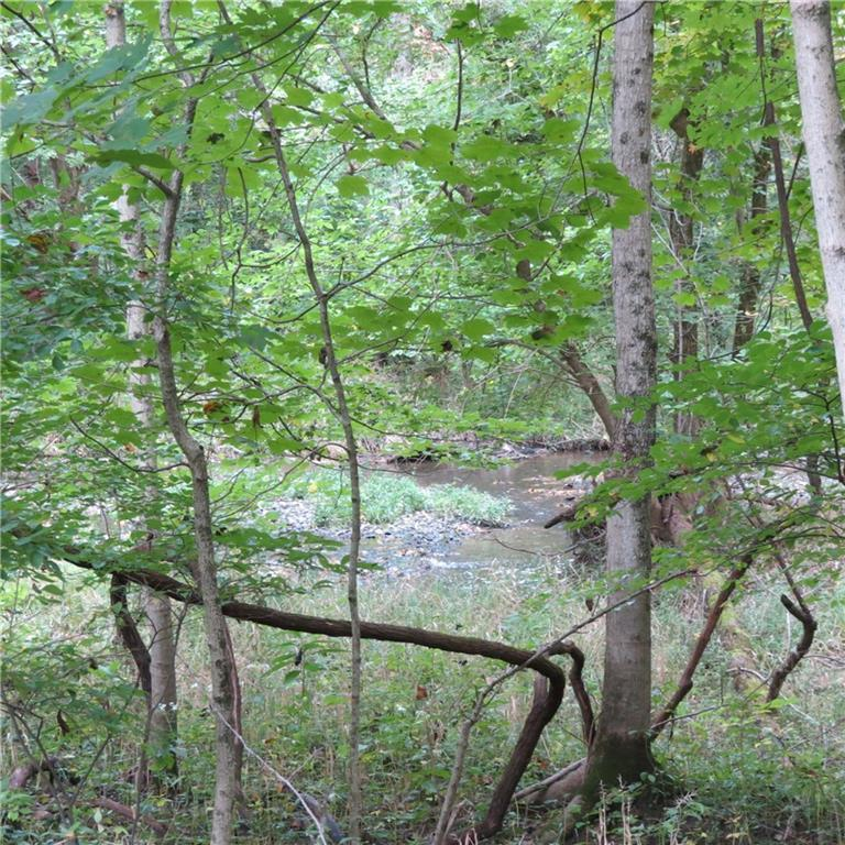 1290 Driftwood - photo 34