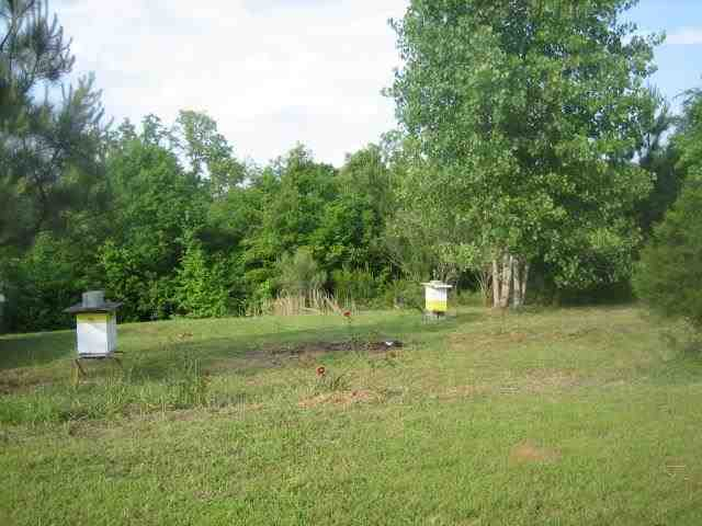 266 Lonesome Pine Rd, Abbeville, SC 29620