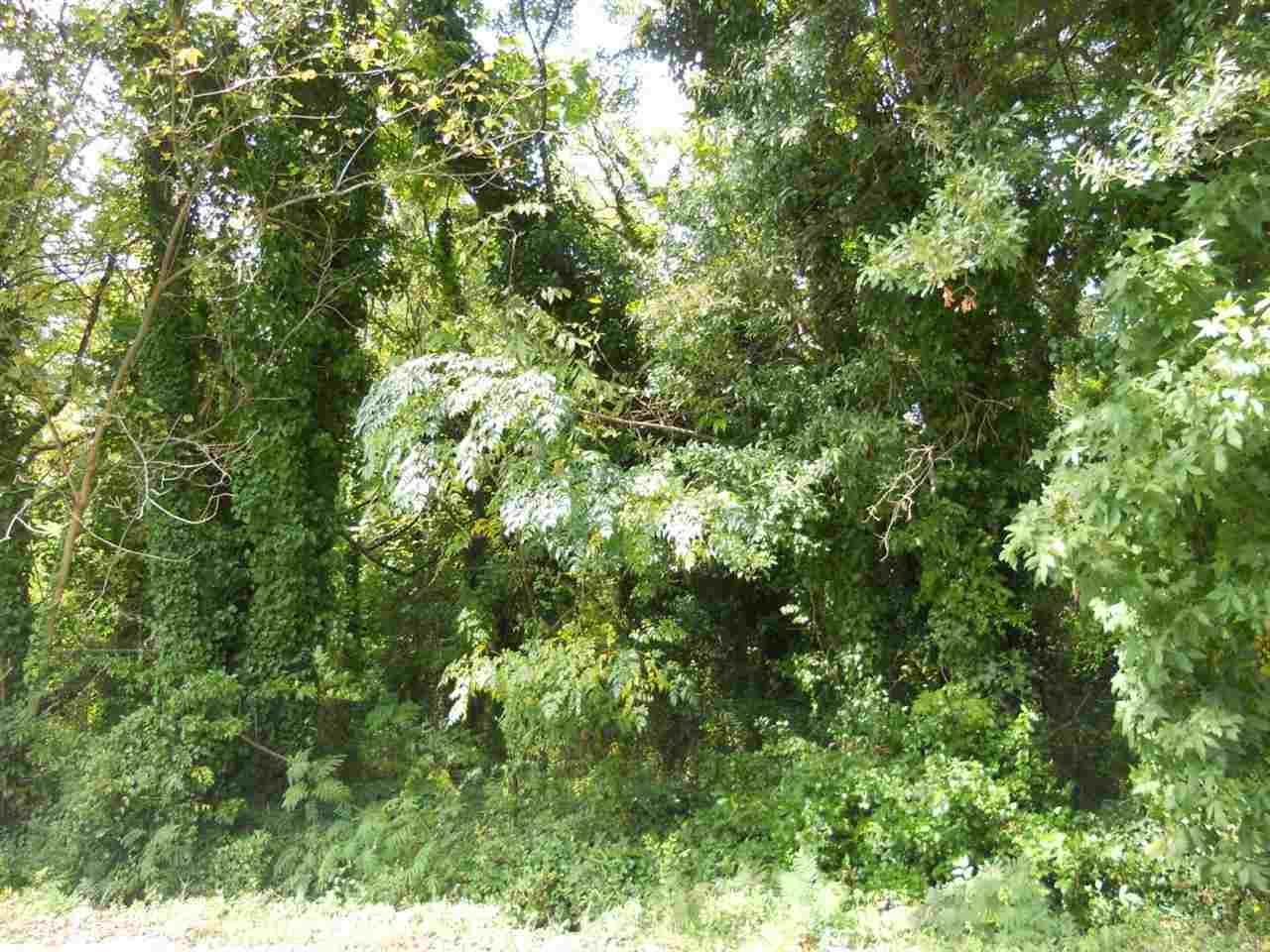 Land for Sale, ListingId:25453365, location: 00 Minus Street Greenville 29601