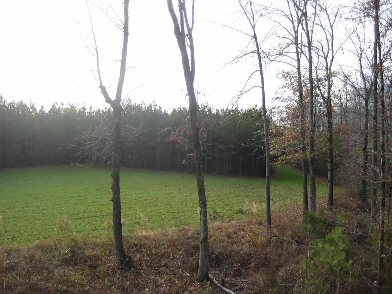 136.42 acres Abbeville, SC