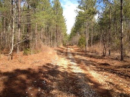 165.25 acres Abbeville, SC