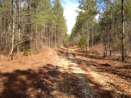 Image of Acreage for Sale near Abbeville, South Carolina, in Abbeville County: 114.02 acres