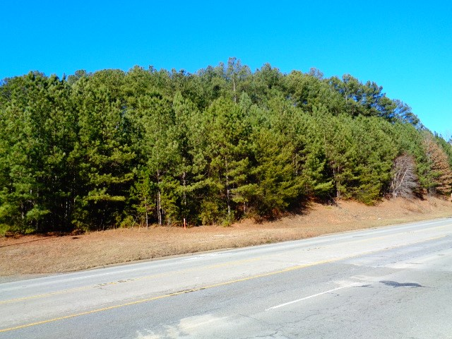 primary photo for 1.14 Acres  By-Pass Highway 123, Seneca, SC 29672, US