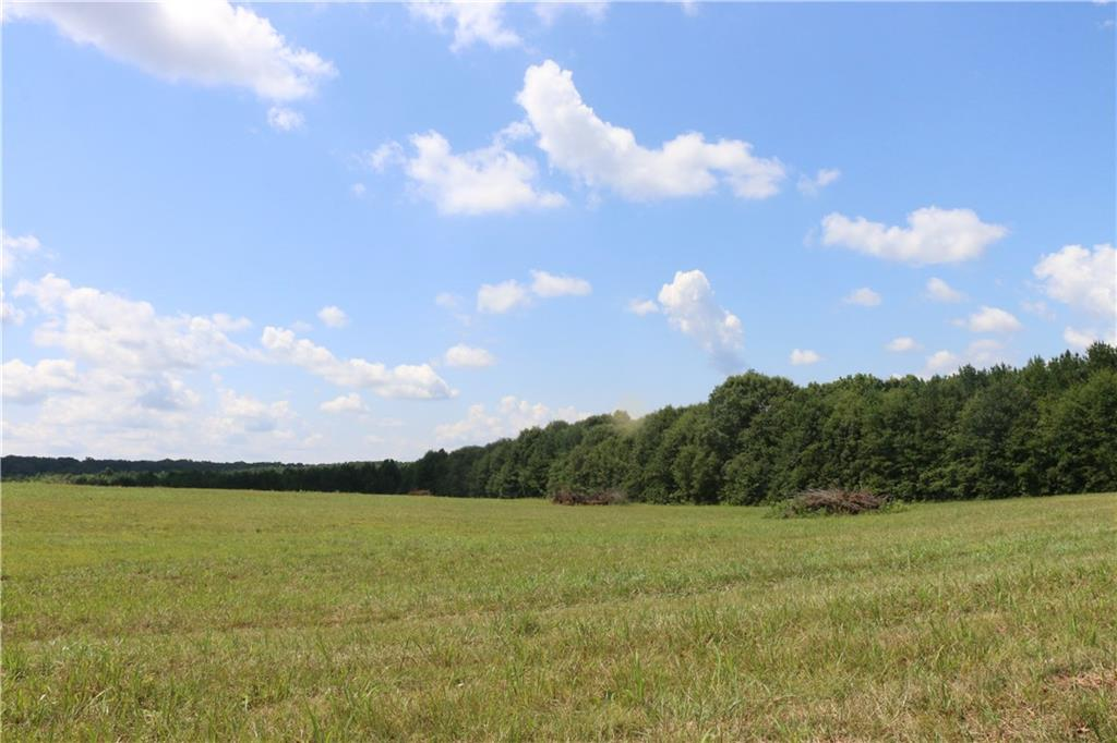 3105 Hwy 29 S Lot 16 - 11 Wood Forest L, Anderson, South Carolina
