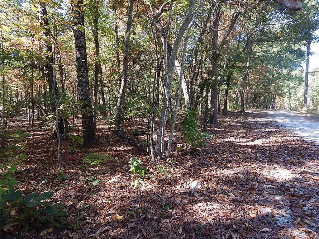 D Autumn Eve Drive Mountain  Rest, SC 29664