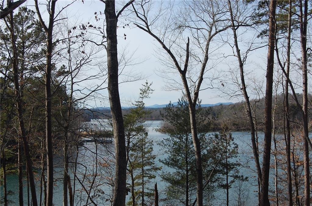Lot 31 Squirrel Point Six Mile, SC 29682
