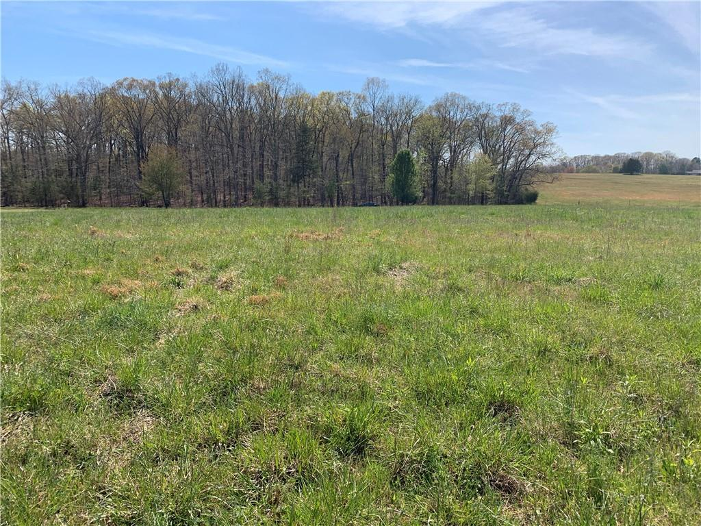 00 Hickory Lane, Pendleton in Anderson County, SC 29670 Home for Sale