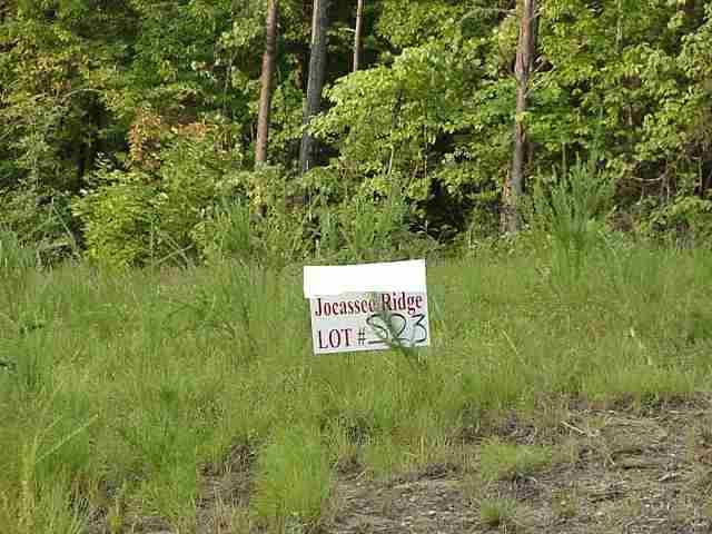 Real Estate for Sale, ListingId: 18306696, Salem,SC29676