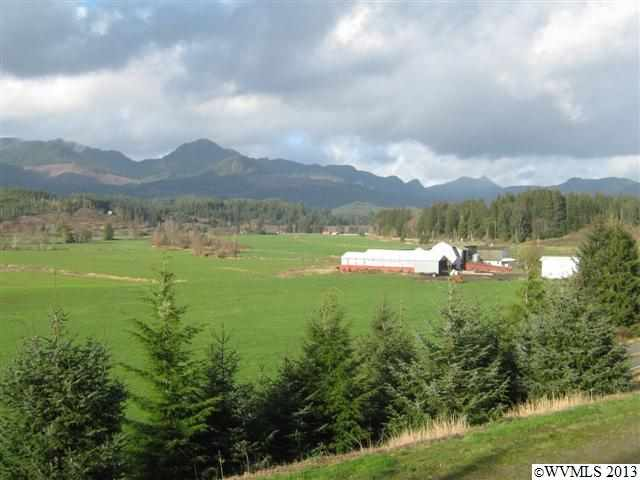 325 acres in Nehalem, Oregon