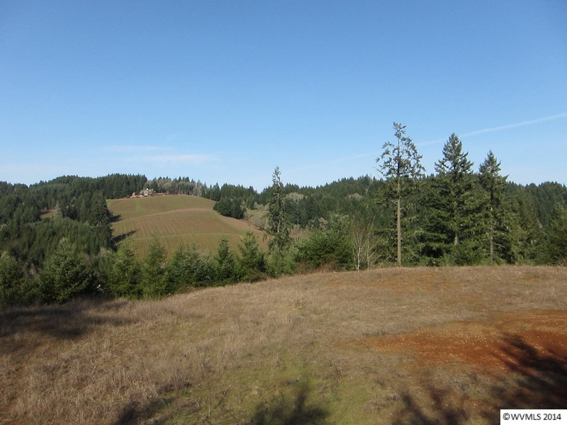 25.93 acres Mcminnville, OR