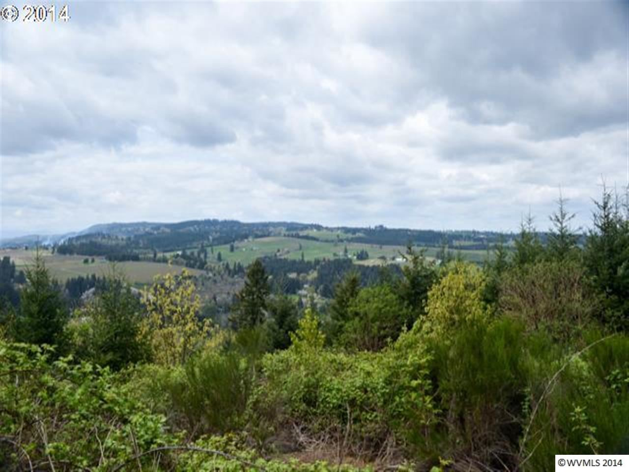 20 acres by Newberg, Oregon for sale