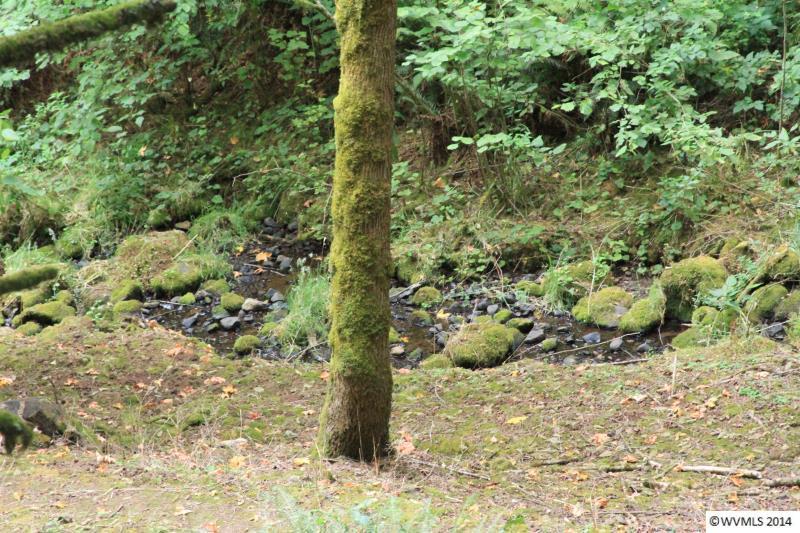 Deep Woods Ln, Salem, OR 97304
