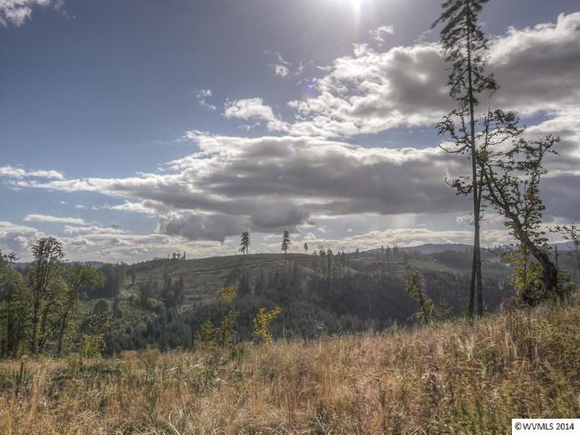 10.7 acres by Gaston, Oregon for sale