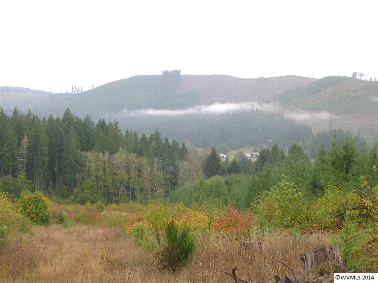 30.4 acres Marcola, OR