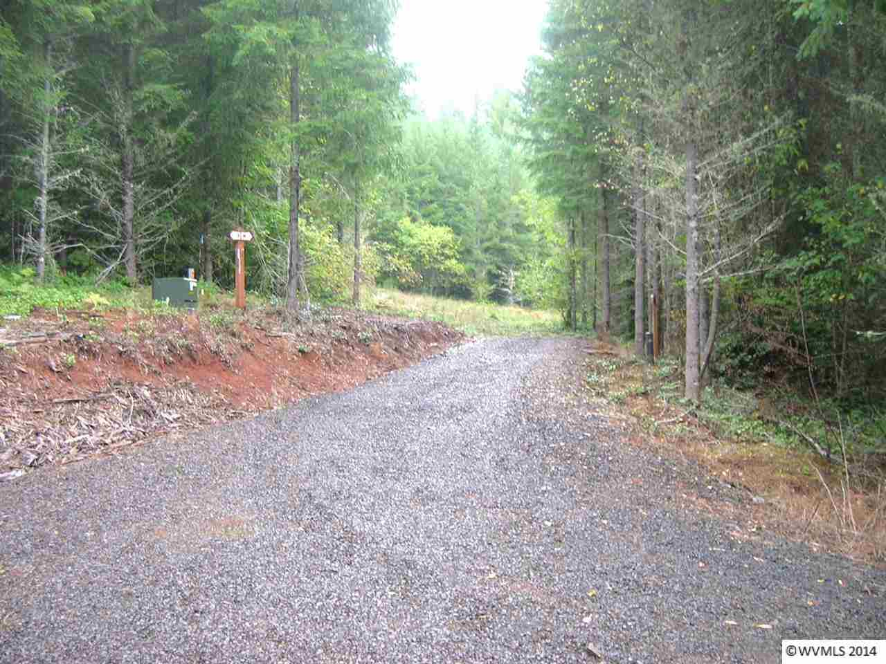 10.03 acres Marcola, OR