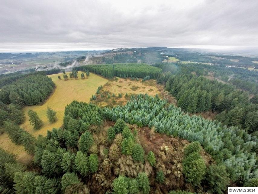 15.99 acres by Newberg, Oregon for sale