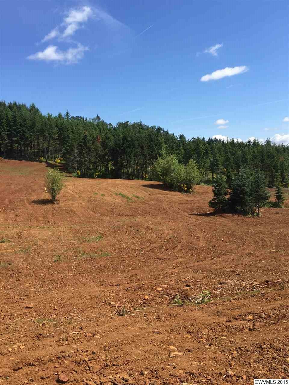 28.18 acres Dallas, OR