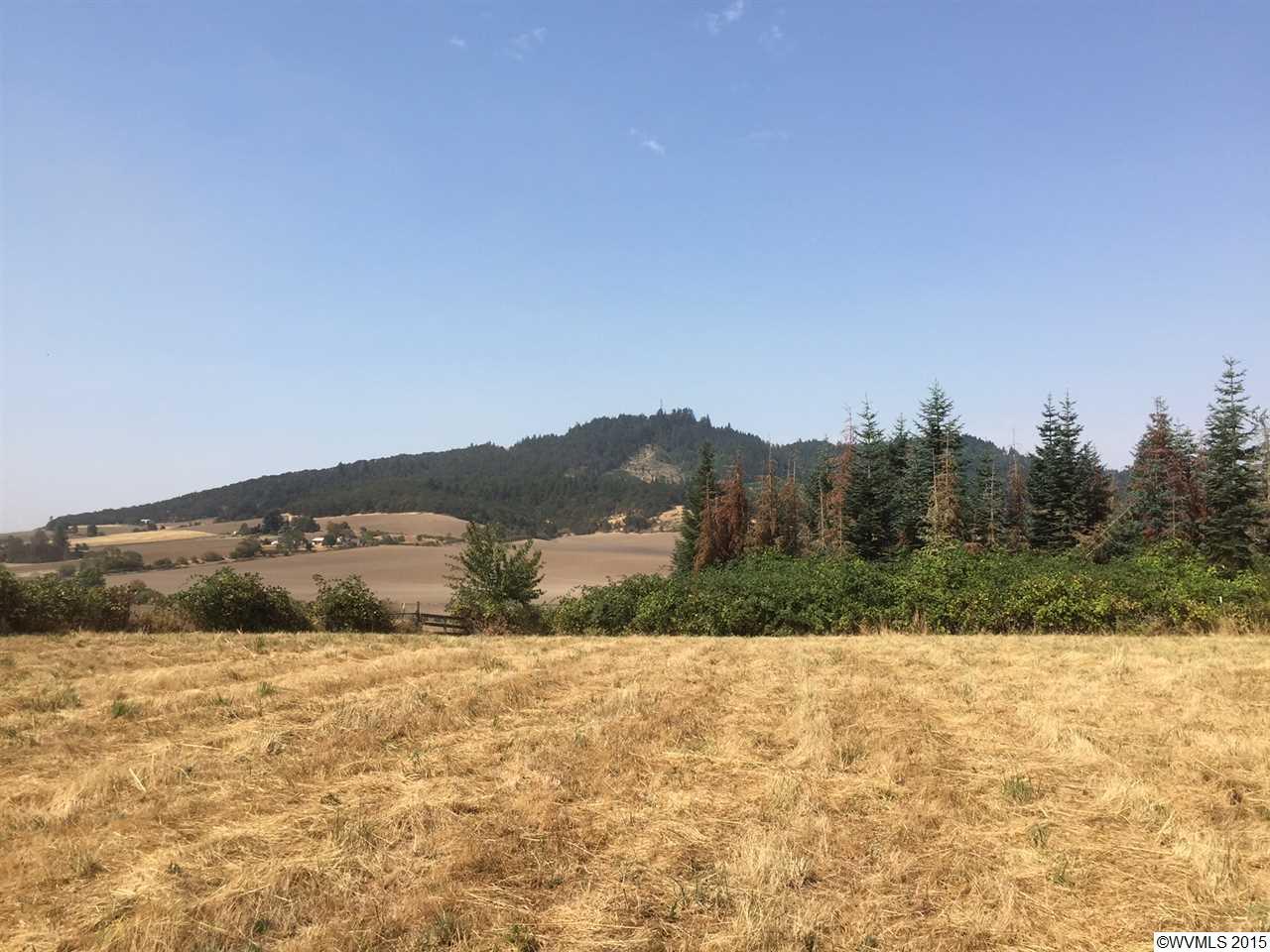 15.06 acres Lebanon, OR