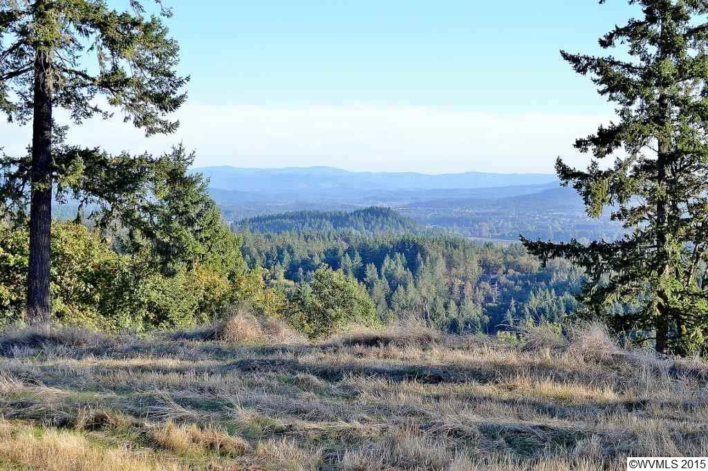 Image of Acreage for Sale near Lebanon, Oregon, in Linn County: 71.74 acres