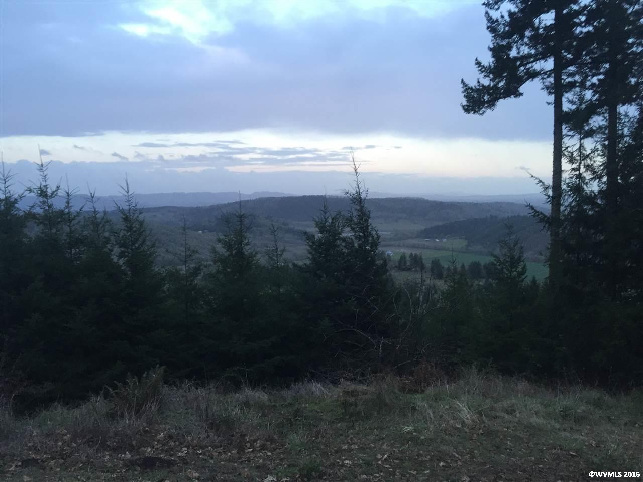 Image of Acreage for Sale near Mcminnville, Oregon, in Yamhill county: 6.62 acres