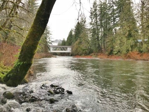Image of  for Sale near Sweet Home, Oregon, in Linn County: 1.03 acres