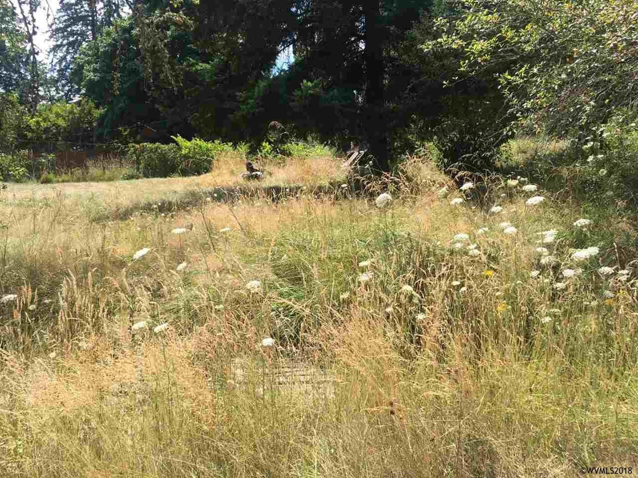 primary photo for SW Country Club & 72nd (Lot #3), Corvallis, OR 97333, US