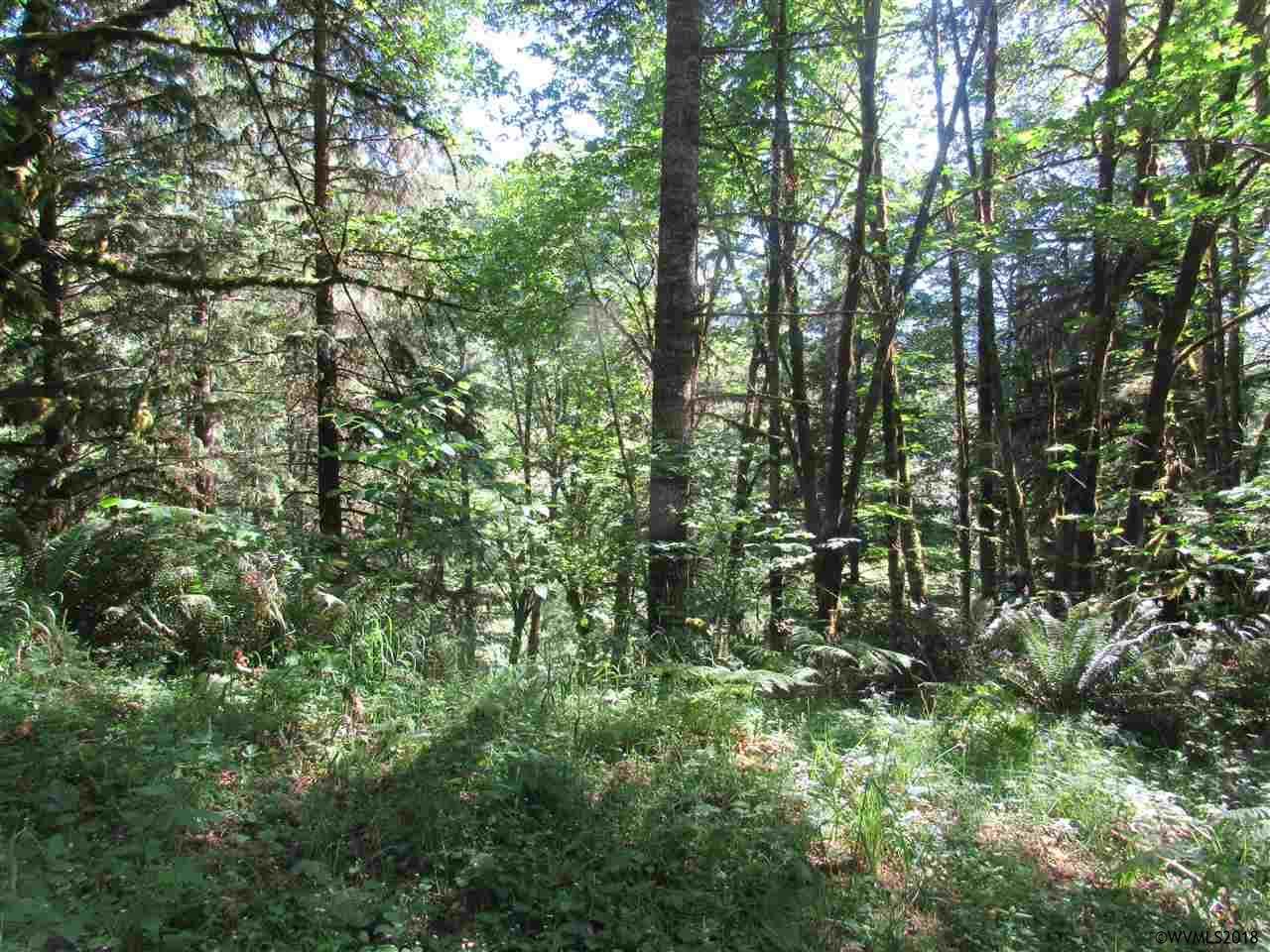 North Fork (Parcel R64326) Rd SE Lyons, OR 97358