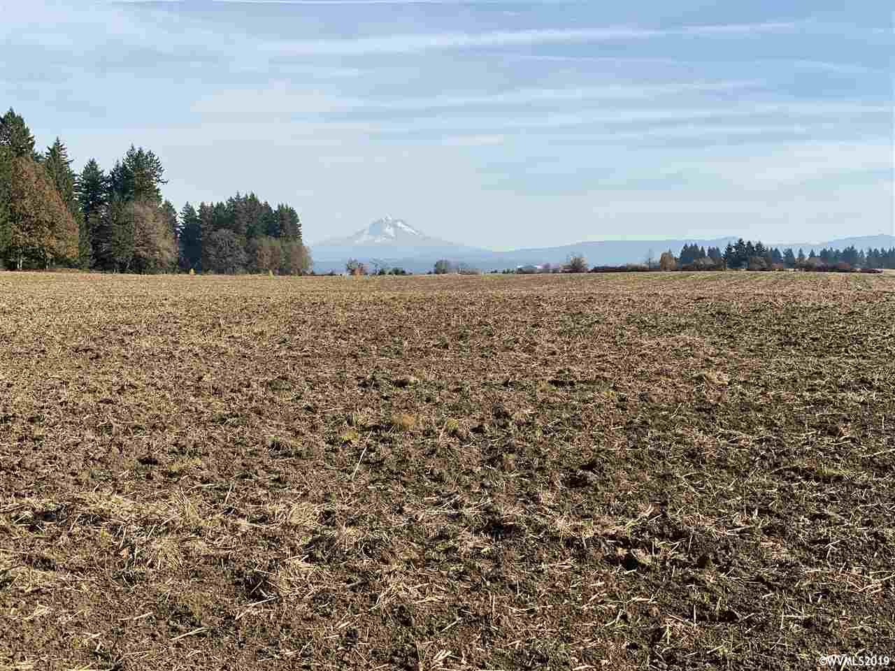 S Arthur (Lot #903) Rd, one of homes for sale in Oregon City