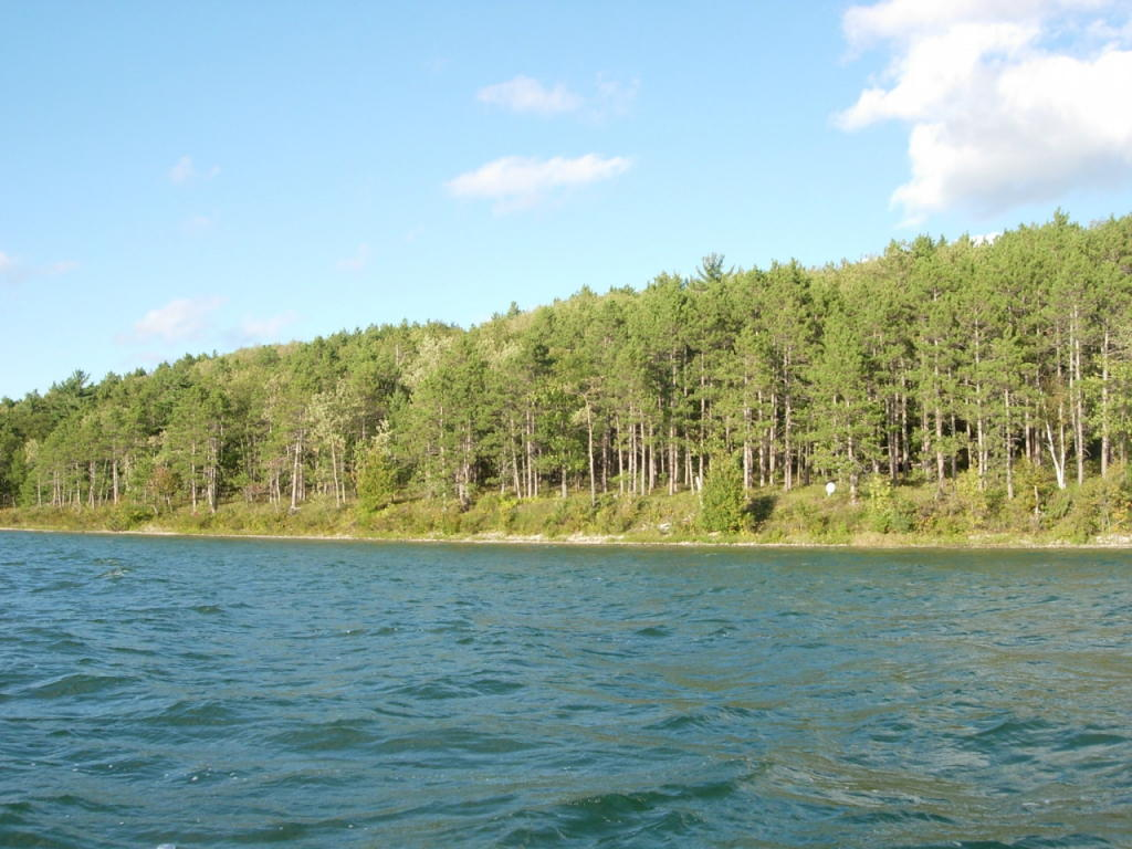burt lake hindu singles Looking for a home in burt lake search the latest real estate listings for sale in burt lake and learn more about buying a home with coldwell banker.