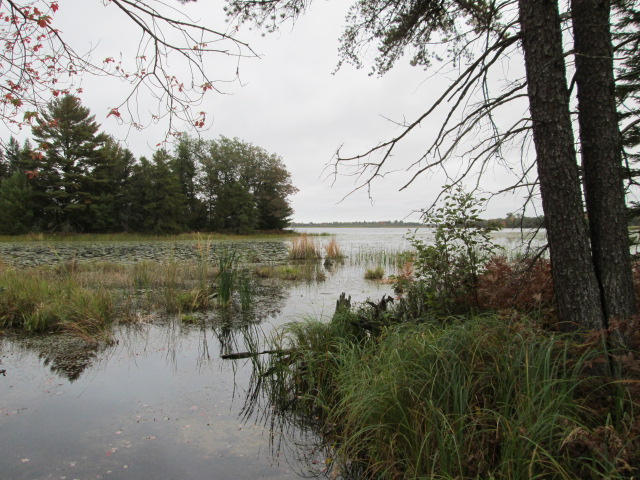 127 acres in Alpena, Michigan
